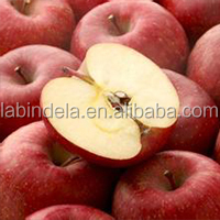 Chinese fresh qinguan apple for sale