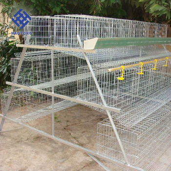 Factory price supply layer poultry A-type battery chicken laying cage