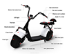 alibaba hot sale fat tire harley 1000w golf trolley citycoco electric motorcycle