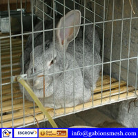 ISO9001:2008 high quality/low price cages used for rabbits,Professional factory