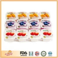 U.May Mixed Flavor Fruit Yogurt Blueberry Peach Mango Pudding in nata de coco