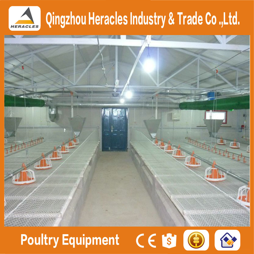 Heracles chicken house poultry farming equipment for sale
