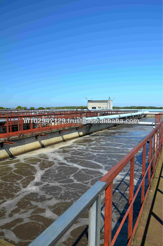 Bioculture that helps to treat water from sewage treatment plant for irrigation