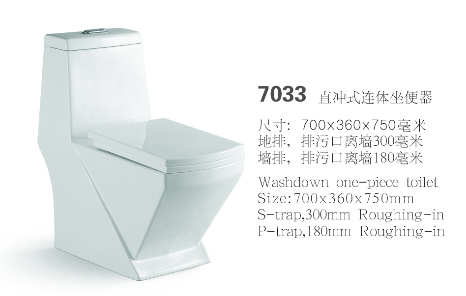 washdown one-piece toilet
