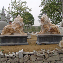 Carving lion statue mold
