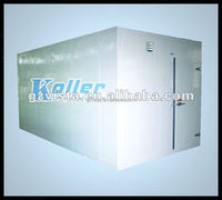 Industrial Large Deep Freezer Room for Storing Fish and Meat Fruits Vegetables