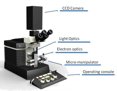 Benchtop Transmission + Scanning Electron Microscope