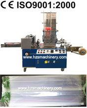 Adjustable Pillow Type Group Straw Packing Machine