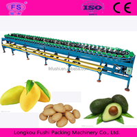 fruit and vegetable washing line Automatic Fruit Processing Machine