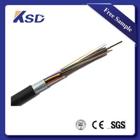 6 8 12 24 36 48 72 96 144 Cores GYTA/ GYTS Armored Fiber Optic Cable Price Per Meter