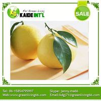 Sweet Fresh Pomelo Fruit For Sale