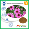 ISO-cGMP Manufacturer High Quality Free Sample Echinacea Extract