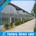 PC Sheet Greenhouse/ Polycarbonate Greenhouse Agriculture