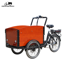 2019 new 3 wheels electric folding cargo bike for kids