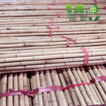 WY- 084 Wolesale Farming Bamboo Poles with high quality