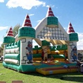 Cool style inflatable bouncer/jumping castle/commercial bouncy castles