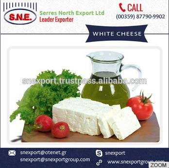 Best Selling Product White Cheese Available at Wholesale Price