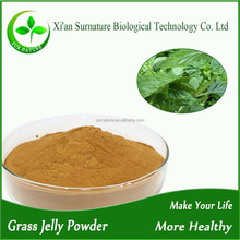 Natural grass jelly powder/jelly grass mesona chinensis P.E