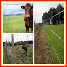 cheap price high tensile types of farm fencing