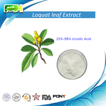 Natural Ursolic Acid 25%-98% HPLC/CAS No.: 77-52-1