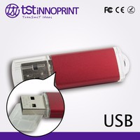 Promotional Custom Color & Print USB Flash Stick