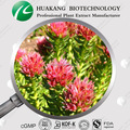 China supplier Free samples Organice Rhodiola rosea extract