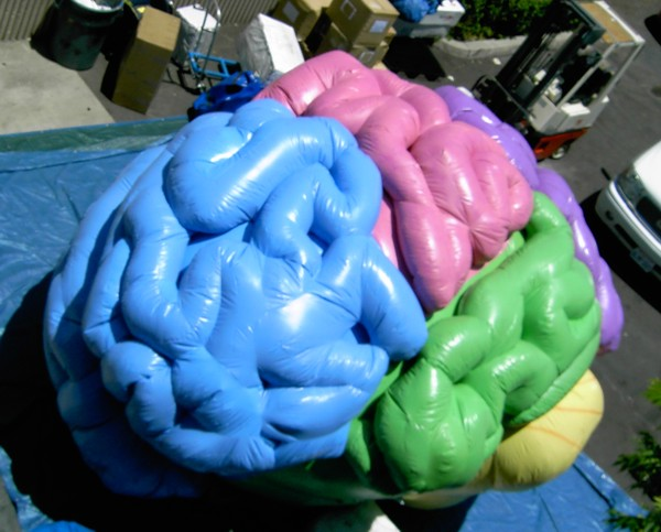Giant unique design vivid inflatable brain shape model for outdoor advertising