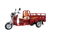 low price of three wheel motorcycles/three wheel electric tricycle for adults/electric tricycle offered