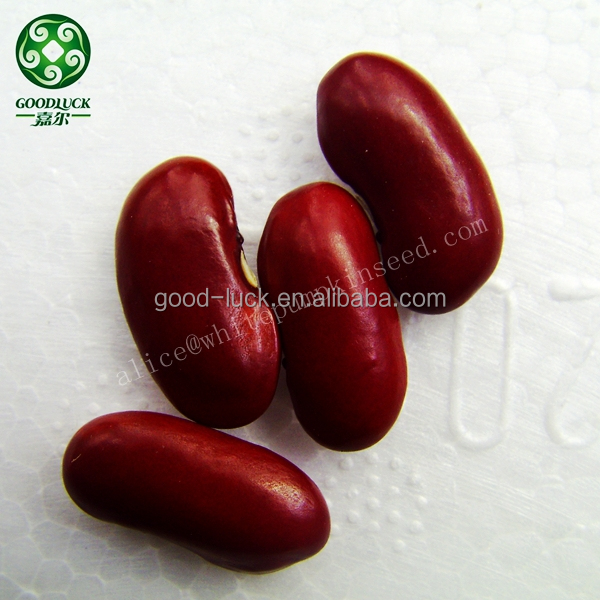 2014 Crop Wholesale Red Kidney Beans Price