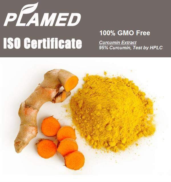 Natural curcumin liquid manufacturers,food supplement curcumin liquid