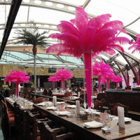 Wedding decoration artificial pink ostrich feathers centerpieces