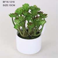 High quality artificial green plastic succulent plant for sale
