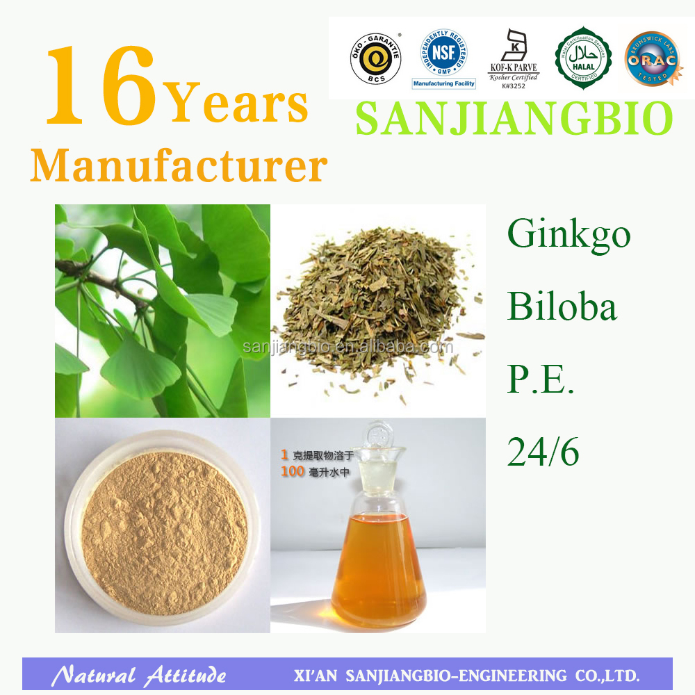 Natural Ginkgo Biloba P.E. 24 Gingoflavones 6% Lactones for Anti-aging
