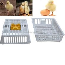 Big door and easy to pick chicken heavy-duty animal turnover crate/box/cage for chicken