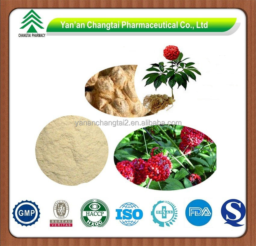 GMP factory supply hot sale Radix Notoginseng P.E.Total Panax notoginseng Saponins