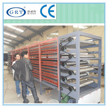 CE industrial Cyphomandra befacea sende belt hot air dryer /drying machine/drying equipment