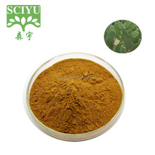 Slimming Product Cactus Extract Powder 5:1 10:1 20:1