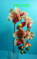 SJH121618 artificial flowers artificial orchid stem plastic orchid flower factory