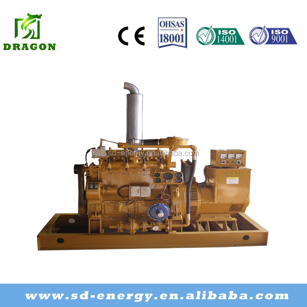 2016 CCHP Wood Waste Gas Electric Power Plant