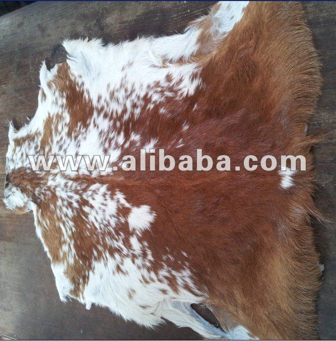Hair On Goat Finished Leather