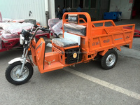 Heavy load 1000W cargo electric tricycle adults/hot sale Hybrid power new cargo bajaj three wheeler price