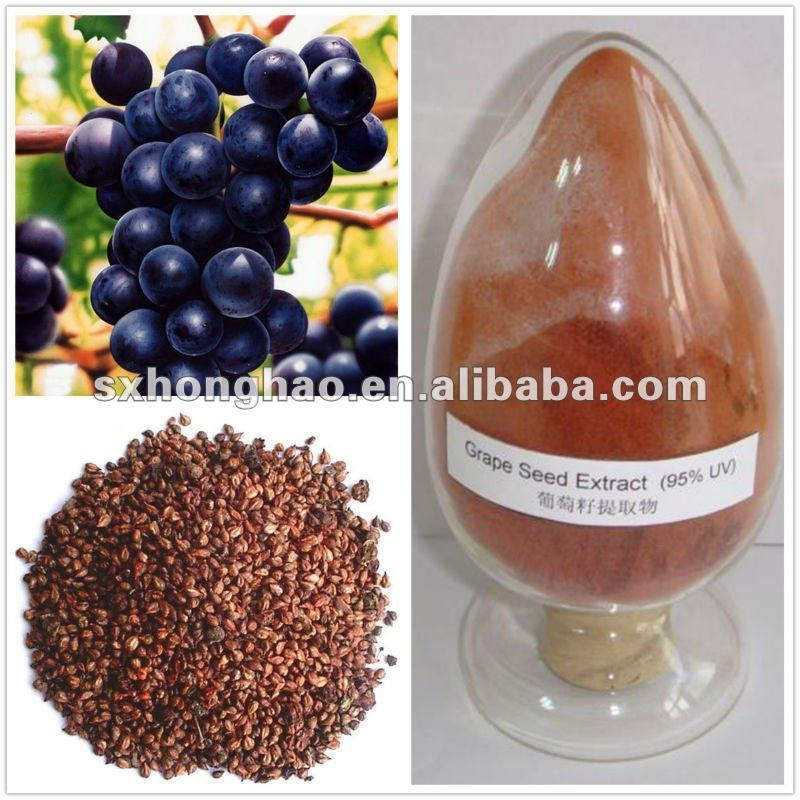 Pure Natural Grape Seed Extract Powder with 70%-85% polyphenols (UV)