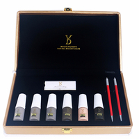 Factory Supply YD Ombre Brows Kit Semi Permanent Makeup Pigments with Shadow Effect Blades