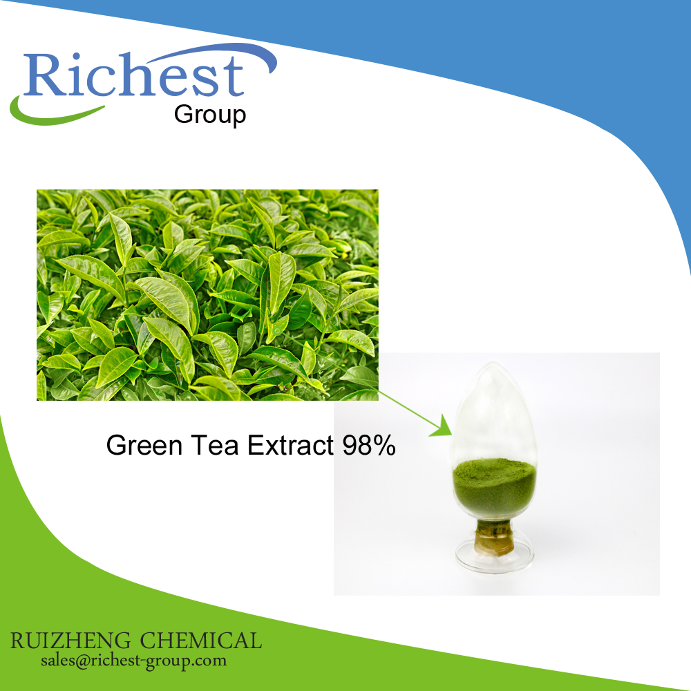 Factory Offer High Purity Low Price Green Tea Extract Powder egcg 98%