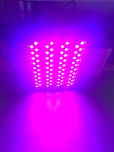 2016 Evergrow led grow lights for indoor plants with 3 years warranty