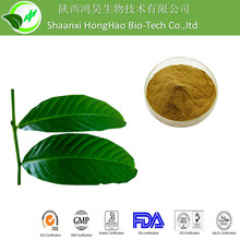 Weight Loss Brown Yellow Powder 1% corosolic acid banaba leaf extract/Lagerstroemia Speciosa