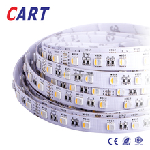 CART 2018 Newest Hot Selling RGB/RGBW led strip DC12V / 24V 60leds IP65 waterproof decoration LED strip light