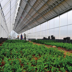Commercial Galvanized Steel Frame greenhouse steel frame