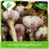 2014 New Crop Chinese Pure White Garlic (1kg/net)