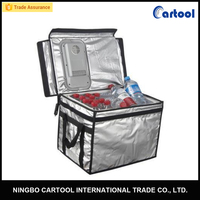 12v 40L foldable Thermoelectric picnic insulated cooler bag for frozen food